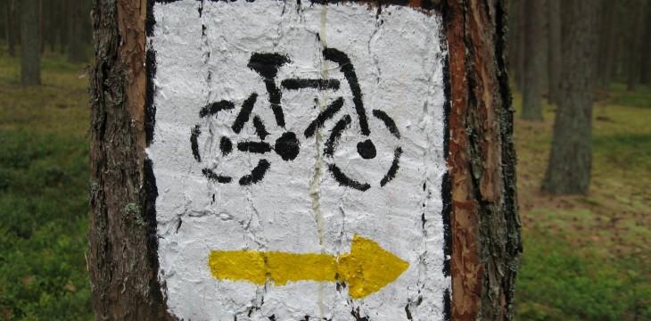 Rajd rowerowy '15
